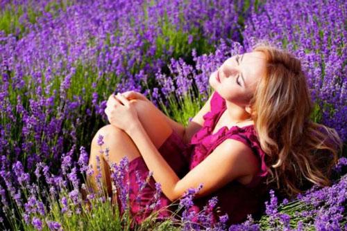 Lavender-Festival-Image.jpg
